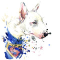 Bull Terrier dog Superman T-shirt graphics. dog illustration with splash watercolor textured background. unusual illustration wa