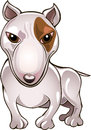 Bull terrier funny illustration with drawn in cartoon style Royalty Free Stock Image