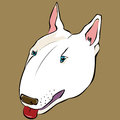 Bull terrier illustration of a terriers head Royalty Free Stock Photography