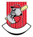 Bulldog baseball player vector of Stock Photography