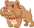 Bulldog cartoon illustration of Stock Photos