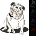 Bulldog Drawing Set Royalty Free Stock Photo