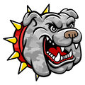 Bulldog head a logo military style this is vector illustration ideal for a mascot and tattoo or t shirt graphic Royalty Free Stock Photography