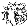 Bulldog head a logo this is vector illustration ideal for a mascot and tattoo or t shirt graphic Stock Photography