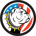 Bulldog Head USA Flag Circle Cartoon