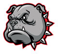Bulldog mascot vector of head suitable for sport team or club Stock Photos