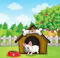 A bulldog outside its dog house with a dog food illustration of Stock Photos