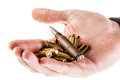 Bullets a heap of mm pistol holded by human hands isolated over a white backgrounds Stock Photo