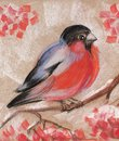 Bullfinch on a branch of mountain ash. Abstract hand drawn with soft pastel illustration