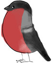 Bullfinch stylised garden bird standing Royalty Free Stock Photography