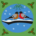 Bullfinches and mistletoe christmas greeting card beloved couple of under a Stock Photos