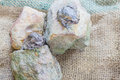 Bullfrog on the rock with sack background Royalty Free Stock Images