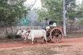 Bullock cart Royalty Free Stock Photo