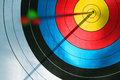 Bulls eye (archery) Royalty Free Stock Photo