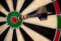 Bullseye Perfect Hit Closeup Royalty Free Stock Photo