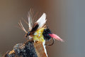 Bumble bee imitation fly fishing lure macro shot of a with yellow and black body brown hackle and a red tail Stock Image
