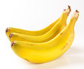 Bunch of bananas isolated in the canary islands Stock Image