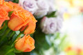 Bunch of beautiful roses red and orange Royalty Free Stock Photography