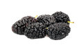 Bunch of black mulberry Royalty Free Stock Photo