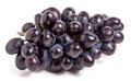 Bunch of blue grapes isolated on white background Royalty Free Stock Photo