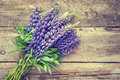Bunch of blue lupine flowers on wooden background