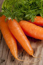 Bunch of carrots Royalty Free Stock Photo