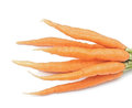 Bunch of carrots heap isolated on white Stock Photos