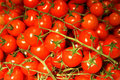 Bunch of cherry tomatoes Royalty Free Stock Photo