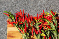 Bunch of chillies Royalty Free Stock Photo