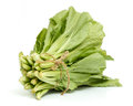 A bunch of chinese cabbage isolated on white background over the Royalty Free Stock Images
