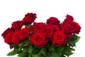 Bunch of dark  red roses  close up Royalty Free Stock Photo