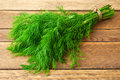 Bunch of dill fresh in the photo Royalty Free Stock Photos