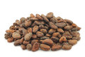 Bunch of dried cocoa beans