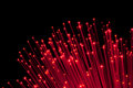 Bunch of Fiber Optic dynamic flying Stock Image