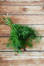 Bunch of fresh dill food closeup Royalty Free Stock Photography