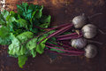 Bunch of fresh garden beetroot over grunge rusty metal backdrop Royalty Free Stock Photo