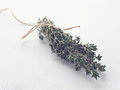 Bunch of fresh garden thyme arranged on white wooden table. Selective focus.