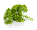 Bunch of fresh green curly parsley Royalty Free Stock Images