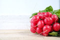 Bunch of fresh organic red radishes Royalty Free Stock Photo