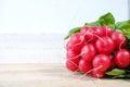 Bunch of fresh organic red radishes Royalty Free Stock Photo