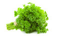 Bunch of fresh parsley isolated on white background Royalty Free Stock Photography