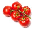 Bunch of fresh tomatoes with water drops top view on white background Stock Images