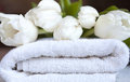 Bunch fresh white tulips flowers white towel Stock Images