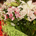 Bunch of gladiolus and red rose over white background Stock Images