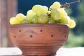 Bunch of grapes in a ceramic bowl Royalty Free Stock Image