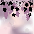 Bunch of grapes plant background vector illustration Royalty Free Stock Photography
