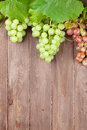 Bunch of grapes and vine on wooden table Royalty Free Stock Photo
