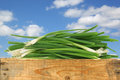 Bunch of green onions in a wooden crate against blue sky with clouds Royalty Free Stock Photography