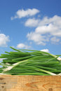 Bunch of green onions in a wooden crate against blue sky with clouds Royalty Free Stock Images