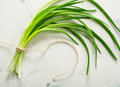 A bunch of green spring onions tied with a rope on a light stone background. Royalty Free Stock Photo